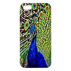 Graphic Painting Of A Peacock iPhone 5S/ SE Premium Hardshell Case