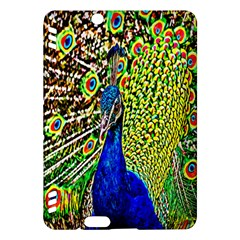 Graphic Painting Of A Peacock Kindle Fire HDX Hardshell Case