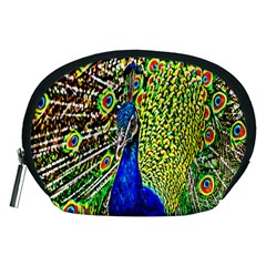 Graphic Painting Of A Peacock Accessory Pouches (Medium)