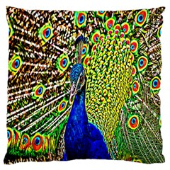 Graphic Painting Of A Peacock Standard Flano Cushion Case (two Sides)