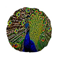 Graphic Painting Of A Peacock Standard 15  Premium Flano Round Cushions