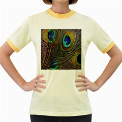 Peacock Feathers Women s Fitted Ringer T Shirts