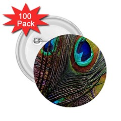 Peacock Feathers 2 25  Buttons (100 Pack)