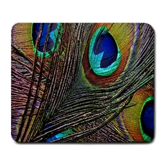 Peacock Feathers Large Mousepads
