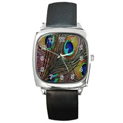 Peacock Feathers Square Metal Watch