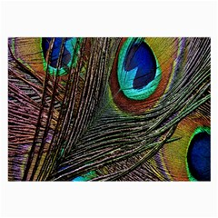 Peacock Feathers Large Glasses Cloth