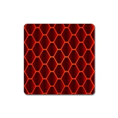 Snake Abstract Pattern Square Magnet
