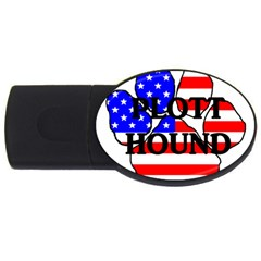 Plott Name Usa Flag Paw USB Flash Drive Oval (2 GB)