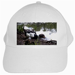 Treeing Walker Coonhound In Water White Cap