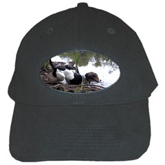 Treeing Walker Coonhound In Water Black Cap