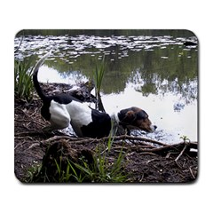 Treeing Walker Coonhound In Water Large Mousepads