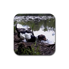 Treeing Walker Coonhound In Water Rubber Square Coaster (4 pack)