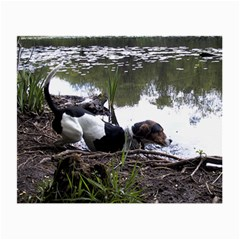 Treeing Walker Coonhound In Water Small Glasses Cloth
