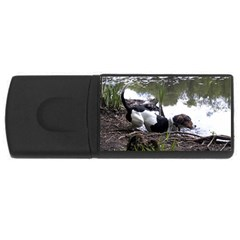 Treeing Walker Coonhound In Water USB Flash Drive Rectangular (4 GB)