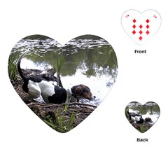 Treeing Walker Coonhound In Water Playing Cards (Heart)