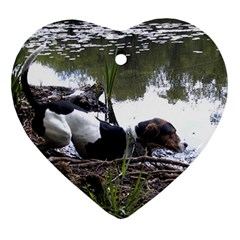 Treeing Walker Coonhound In Water Heart Ornament (Two Sides)