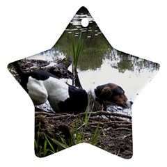 Treeing Walker Coonhound In Water Star Ornament (Two Sides)