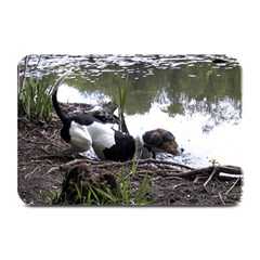 Treeing Walker Coonhound In Water Plate Mats