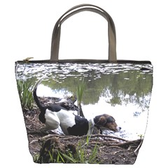 Treeing Walker Coonhound In Water Bucket Bags