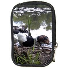 Treeing Walker Coonhound In Water Compact Camera Cases
