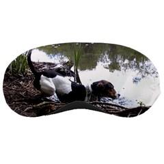 Treeing Walker Coonhound In Water Sleeping Masks