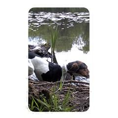 Treeing Walker Coonhound In Water Memory Card Reader