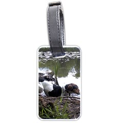 Treeing Walker Coonhound In Water Luggage Tags (Two Sides)