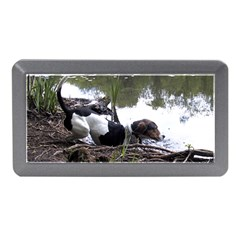 Treeing Walker Coonhound In Water Memory Card Reader (Mini)