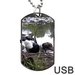 Treeing Walker Coonhound In Water Dog Tag USB Flash (Two Sides)