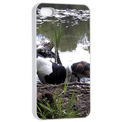 Treeing Walker Coonhound In Water Apple iPhone 4/4s Seamless Case (White)