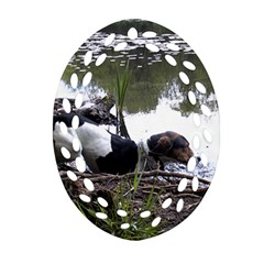 Treeing Walker Coonhound In Water Oval Filigree Ornament (Two Sides)
