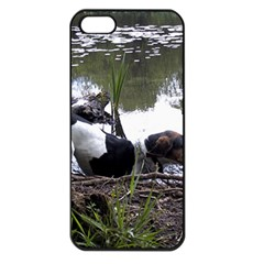 Treeing Walker Coonhound In Water Apple iPhone 5 Seamless Case (Black)