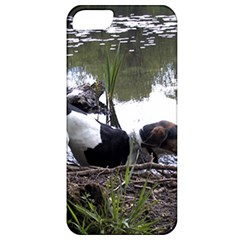Treeing Walker Coonhound In Water Apple iPhone 5 Classic Hardshell Case
