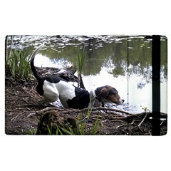Treeing Walker Coonhound In Water Apple iPad 3/4 Flip Case
