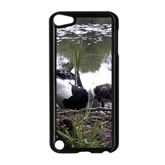 Treeing Walker Coonhound In Water Apple iPod Touch 5 Case (Black)