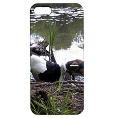 Treeing Walker Coonhound In Water Apple iPhone 5 Hardshell Case with Stand