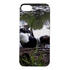Treeing Walker Coonhound In Water Apple iPhone 5S/ SE Hardshell Case