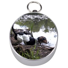 Treeing Walker Coonhound In Water Silver Compasses