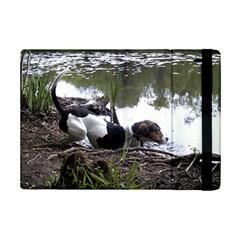 Treeing Walker Coonhound In Water iPad Mini 2 Flip Cases