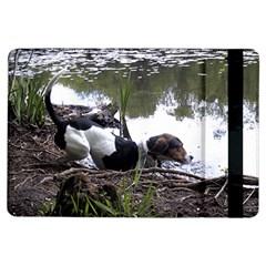 Treeing Walker Coonhound In Water iPad Air Flip