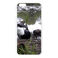 Treeing Walker Coonhound In Water Apple Seamless iPhone 6 Plus/6S Plus Case (Transparent)
