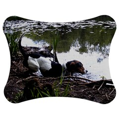 Treeing Walker Coonhound In Water Jigsaw Puzzle Photo Stand (Bow)