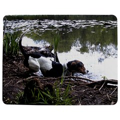 Treeing Walker Coonhound In Water Jigsaw Puzzle Photo Stand (Rectangular)