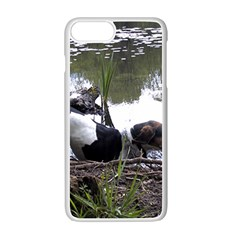 Treeing Walker Coonhound In Water Apple iPhone 7 Plus White Seamless Case