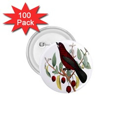Bird On Branch Illustration 1 75  Buttons (100 Pack)