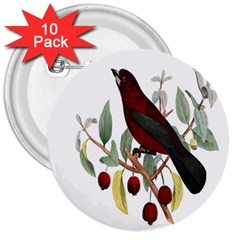 Bird On Branch Illustration 3  Buttons (10 Pack)