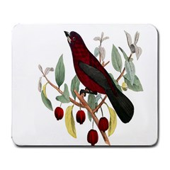 Bird On Branch Illustration Large Mousepads