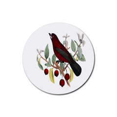Bird On Branch Illustration Rubber Round Coaster (4 Pack)