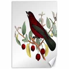Bird On Branch Illustration Canvas 20  X 30