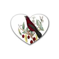 Bird On Branch Illustration Heart Coaster (4 Pack)